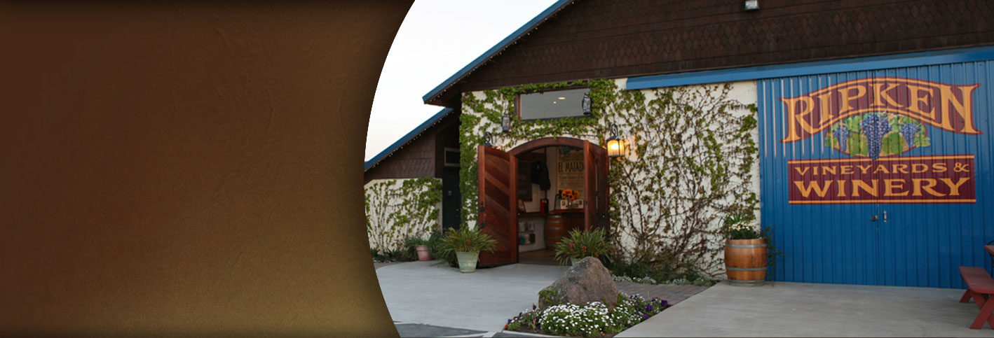 Front of the winery with green vines growing on the wall, front door open and welcoming, and a mural of the Ripken logo on a blue wall.