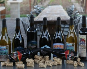 Ripken Wine bottles arranged on a counter with corks. 9 assorted bottles.